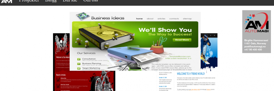 AutoMagi Website Screen
